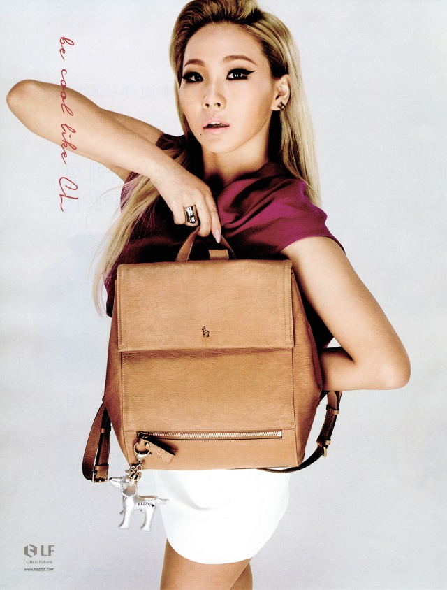 cl_for_hazzys_accessories